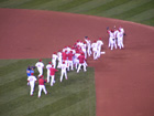 Cardinals players celebrate winning the series